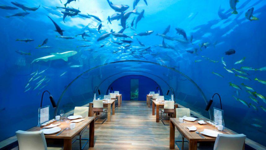 モルディブ・リゾート・水中レストランでの想い出作りはブリュクシートラベルへお任せください